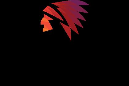 VG_logo_final